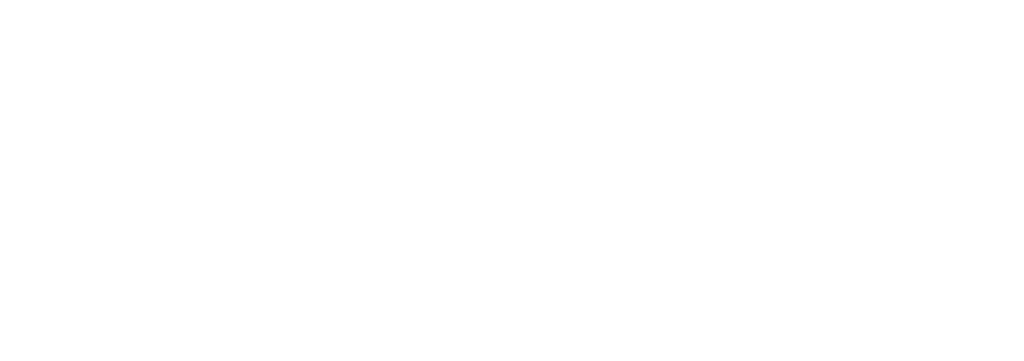 Domain Digital logo - white